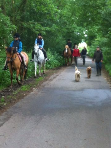 Ponycamp012