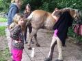 Ponycamp008